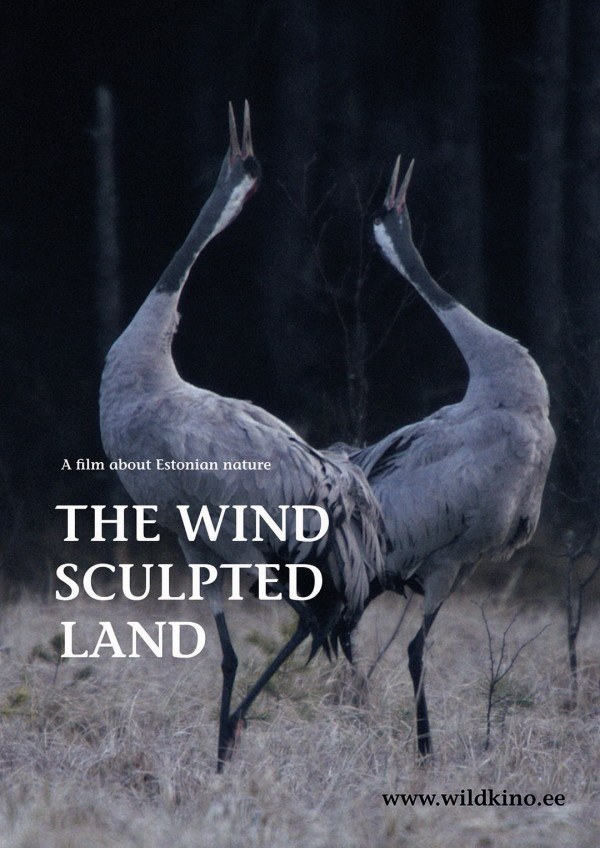 The Wind Sculpted Land eng